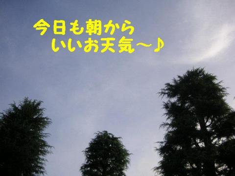 8-7-3.jpg