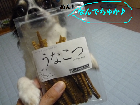 2011夏☆お里-1