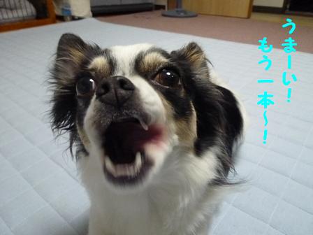 2011夏☆お里-5