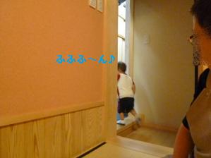 2011夏☆マンゴー-8