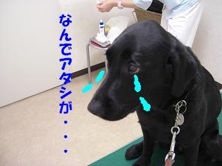 アタシ関係ないのに~(ーー;)
