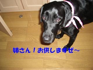 ご飯の為な~らエ~ンヤコ~ラ♪