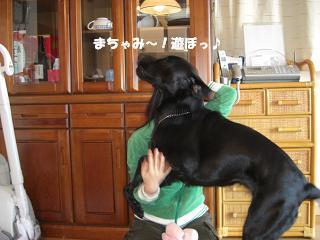 むこう見たらアカン!アタシと遊ぶの~!!