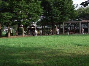 20070803_3.jpg