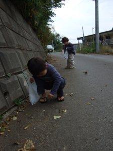 20071110_1.jpg