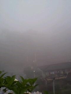 霧がスゲー