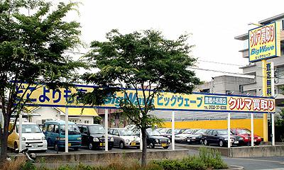 photo-komatsubara.jpg