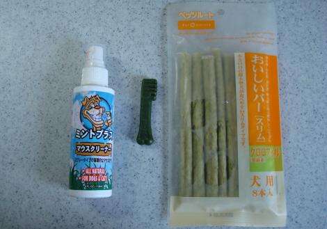 07-7-16_hamigaki.jpg