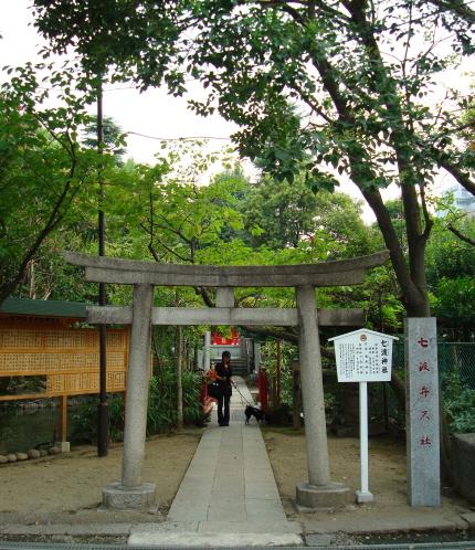 07-8-26_08_nanawatari_1.jpg