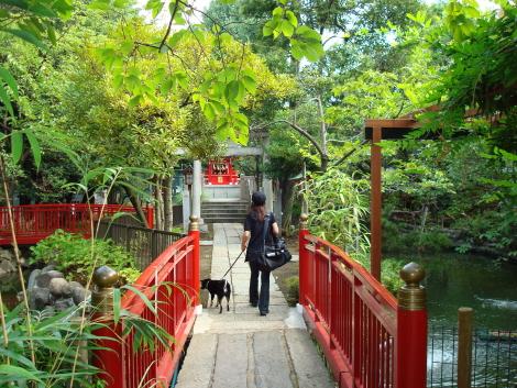 07-8-26_09_nanawatari_2.jpg