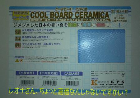 coolboard_1.jpg