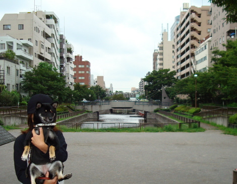 ooyoko_01_iriguchi.jpg