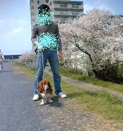 20070409131815.jpg