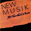 newmusik3.jpg