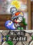 (ノ∀`*)v