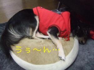 DSCF3488.jpg