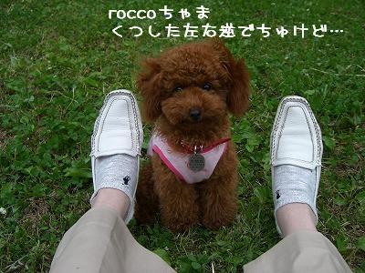 20070604_5.jpg