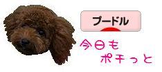 20070916_b.jpg