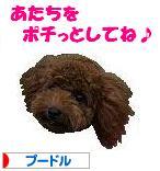 20070917_b.jpg