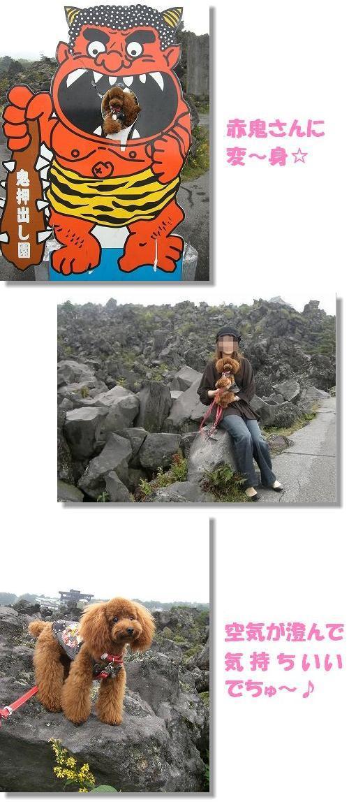 20070927_3.jpg