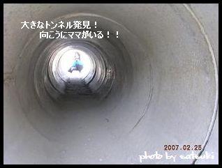 20070227225608.jpg