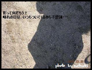20070227225826.jpg