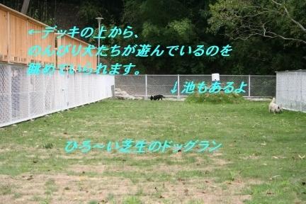 20070630-016.jpg