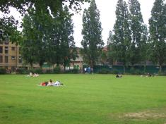 Enjoy picnic!!