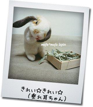 羊毛うさぎちゃん