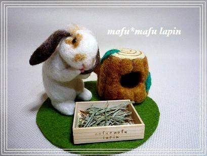 羊毛作品set