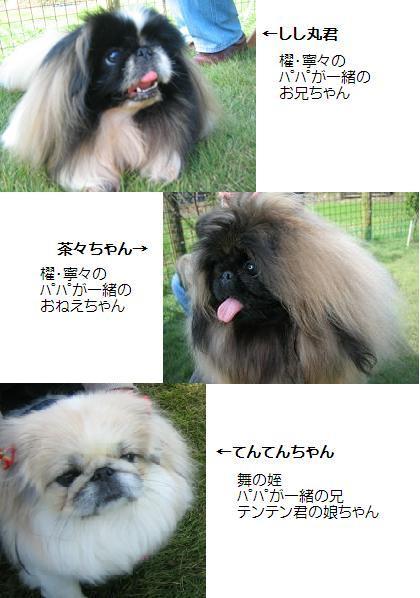 2007-11-04shishikazoku.jpg