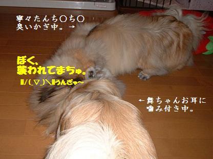 2007-12-05-2.jpg