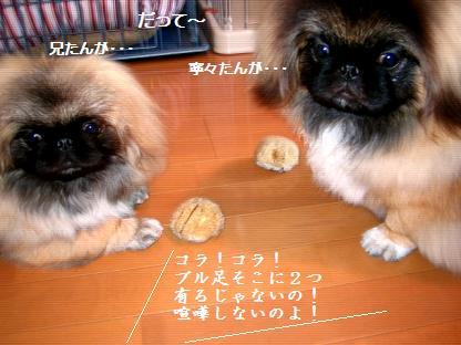 2007-12-14-kai-nene-1.jpg