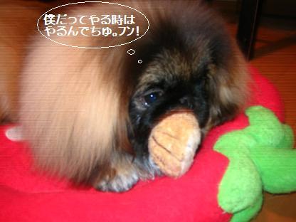 2007-12-14-kai.jpg