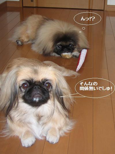 200711-16mai-kai.jpg
