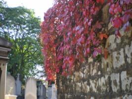 Cimetiere-du-Pere-Lachaise8.jpg