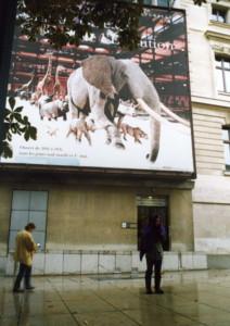 Grand-Galerie-de-LEvolution3.jpg