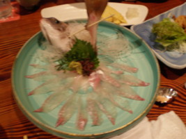 shinjuku-zauo3.jpg