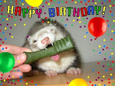 ゴン誕生日
