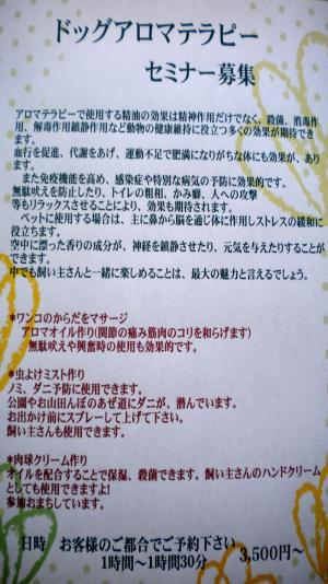 DSCN9381_convert_20110526122953.jpg
