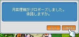 20071009000249.jpg