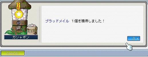 20070415232406.jpg