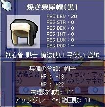 20070415232748.jpg