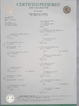 RIMG0034.1.jpg
