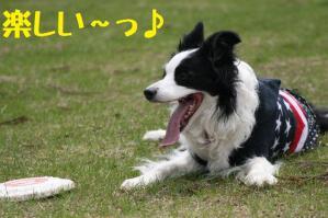 20110503_011mt.jpg