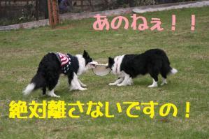 20110503_016mt.jpg