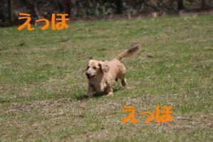 20110504_011mt.jpg