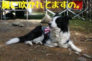 20110504_019mt.jpg