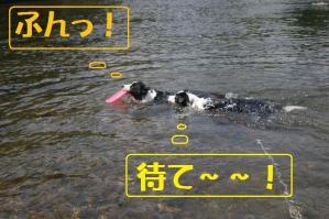 20110710_004mt.jpg