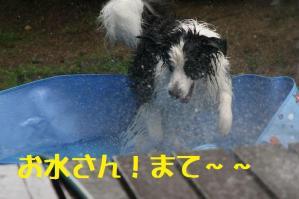 20110720_0011mt.jpg